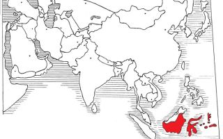 Азия. Индонезия