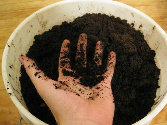 удобрение из кофейной гущи