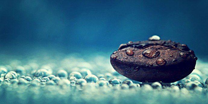 кофейное зерно и капли воды
