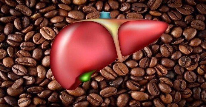Картинки по запросу влиянея кофе на печень