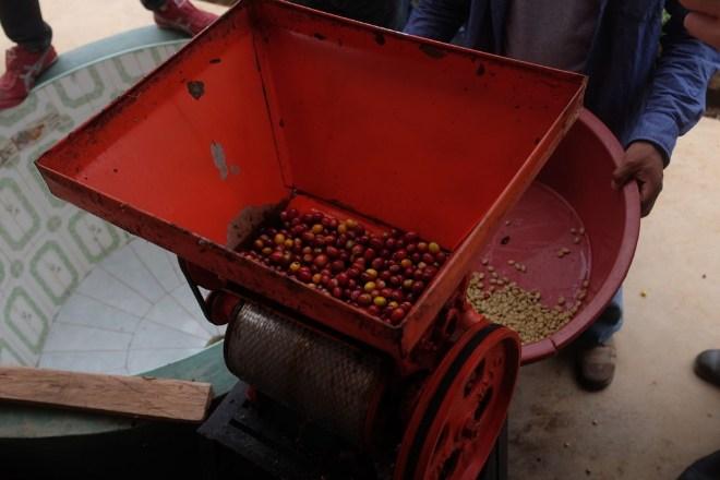 машина для вылущивания кофейных зерен
