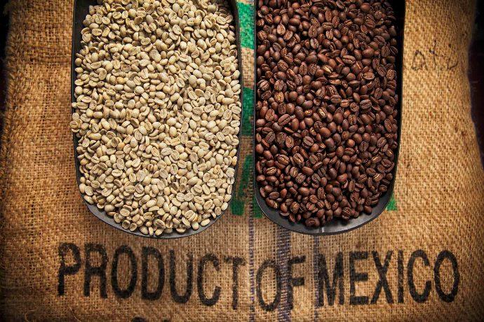 зеленый и обжаренный мексиканский кофе
